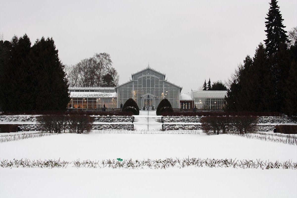 Talvipuutarha Helsinki