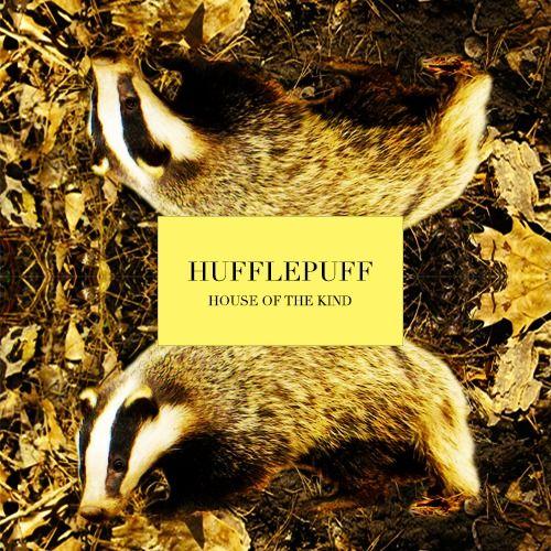 Hufflepuff - harry-potter Fan Art