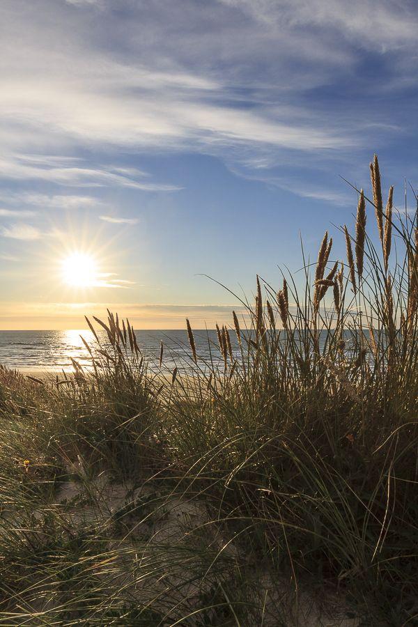 Amalie loves Denmark Ein Tag am Strand an der Nordseeküste Jammerbucht in Dänemark