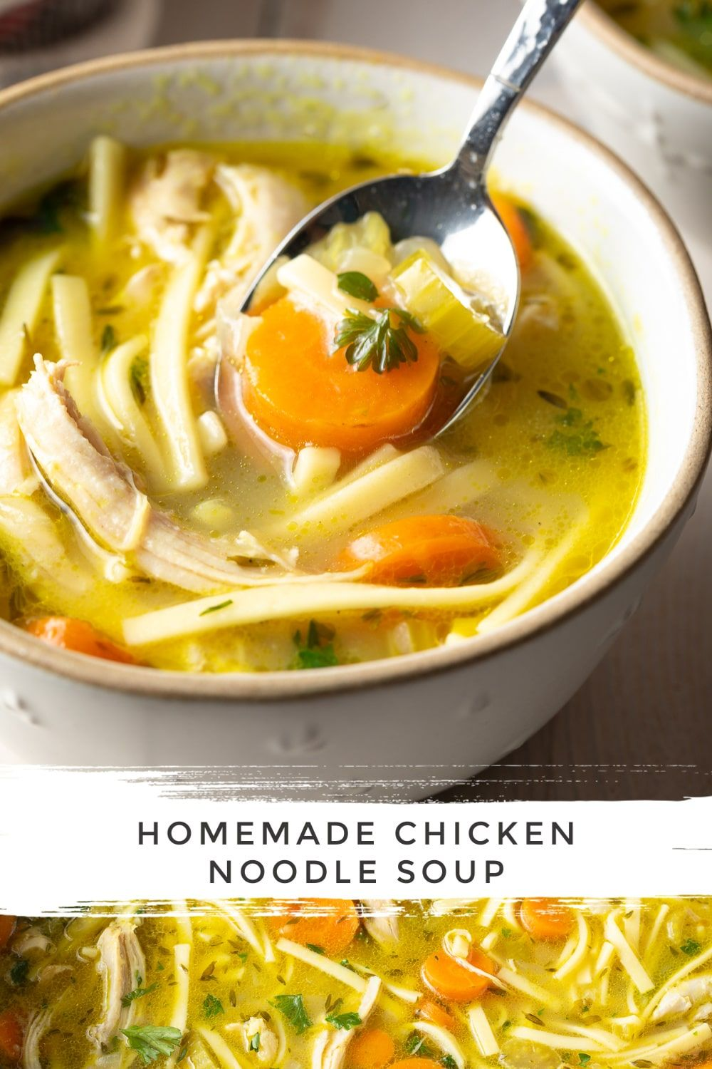Homemade Chicken Noodle Soup Recipe (VIDEO) - A Spicy Perspective