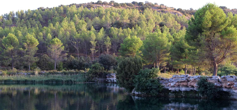 Piscinas Naturales Pozas Rios Y Lagos Para Descubrir En Albacete Piscinas Naturales Piscinas Lagos