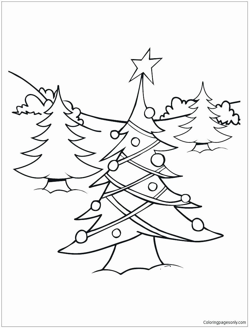 Coloring Page Of Evergreen Tree Luxury Light Coloring Pages
