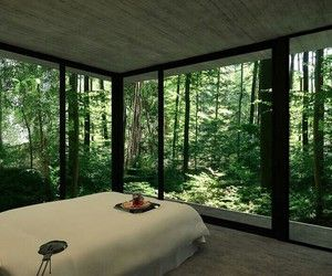 Pretty Much Living With Nature Home Floor To Ceiling Windows House Design
