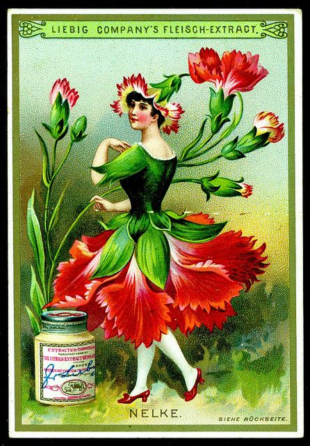 Liebig S268 - Flower Girls 1890 - Carnation by cigcardpix, via Flickr