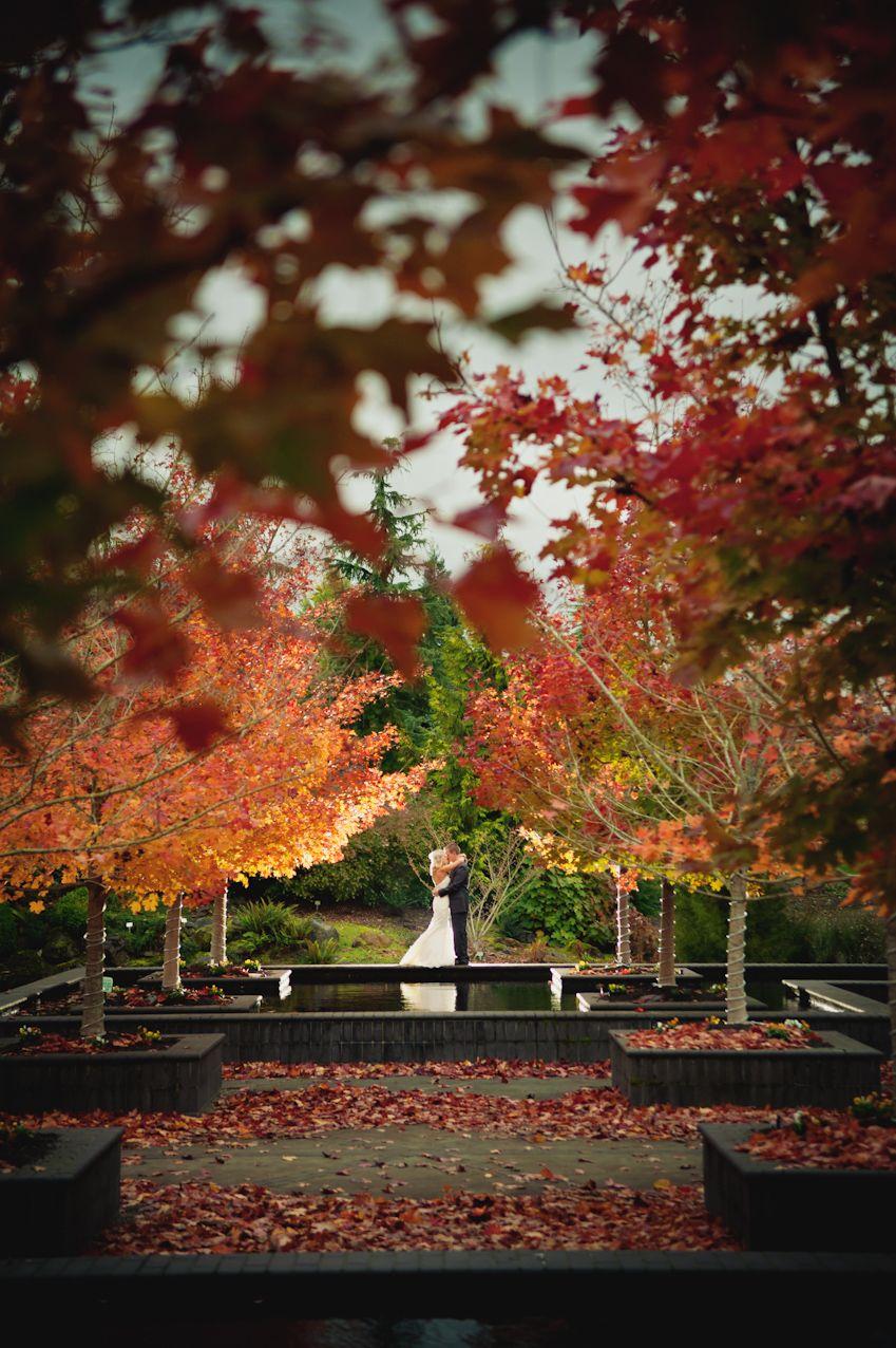 the beautiful Oregon Garden | Our Wedding - 11/11/11 | Pinterest ...