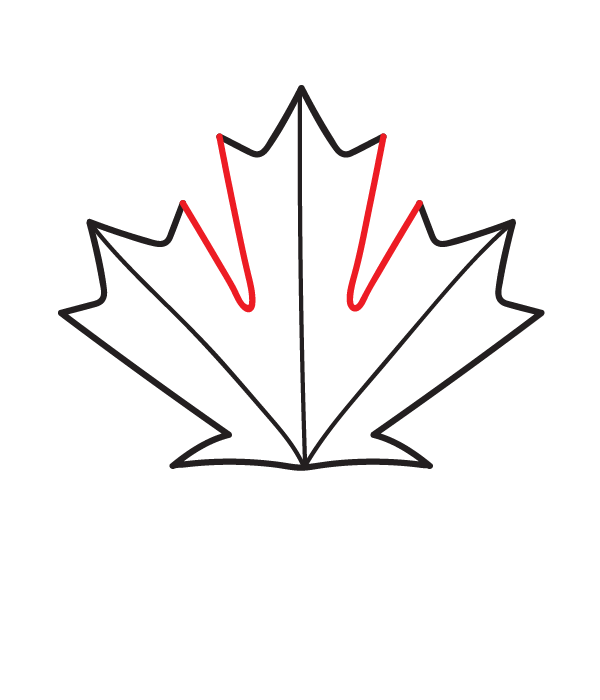 How To Draw A Canadian Maple Leaf Maple Leaf Drawing Canadian Maple Leaf Leaf Drawing Easy