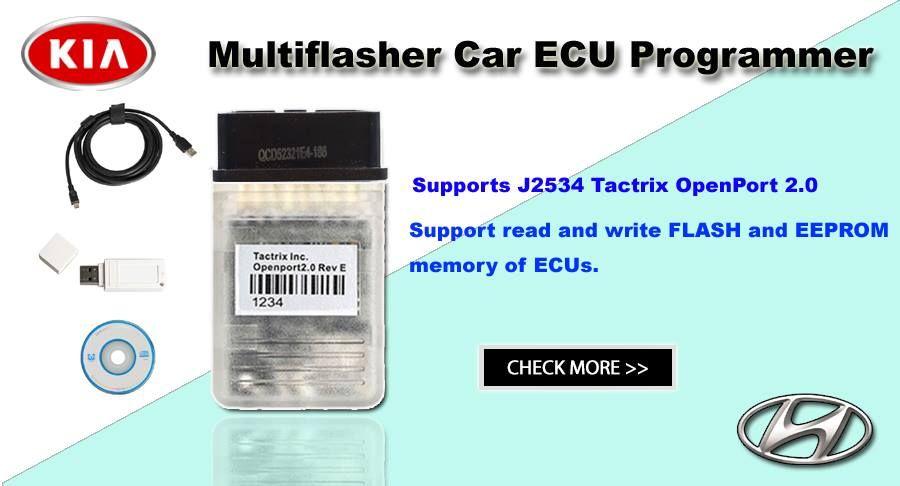 Multiflasher Chip Tuning Software For Hyundai/kia