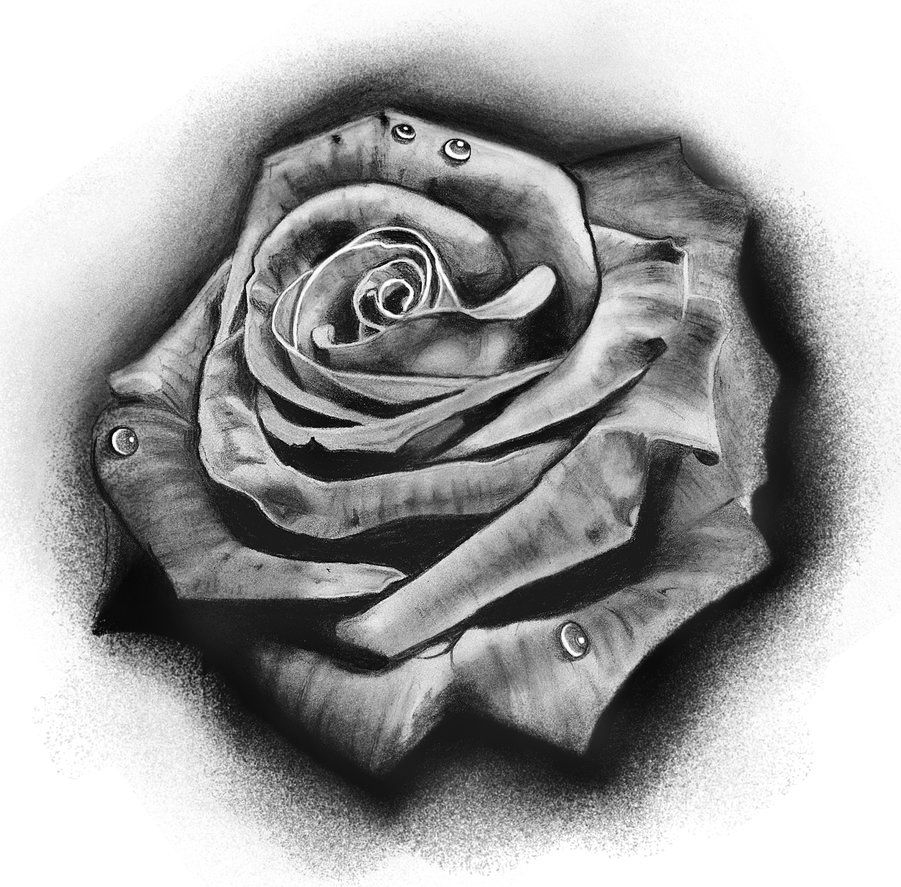 Tattoo Design Rose By Badfish1111 Deviantart Com On Deviantart Rose Drawing Tattoo Black And Grey Rose Tattoo Rose Tattoo Design