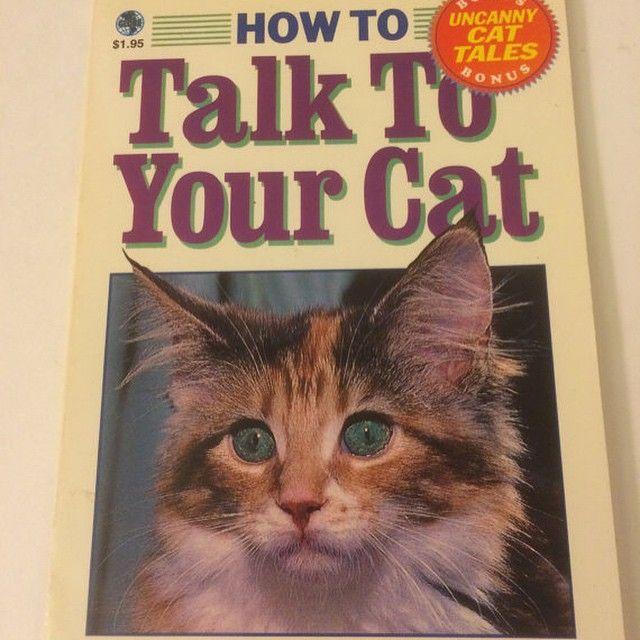 For sale on Etsy. Link in profile. #etsy #etsyvintage #cat #catwhisperer #feline #lolcats #lol #goodluck #gaggift #kittens #icanhascheezburger #meow