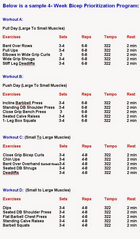 Best Bicep Workouts For Size