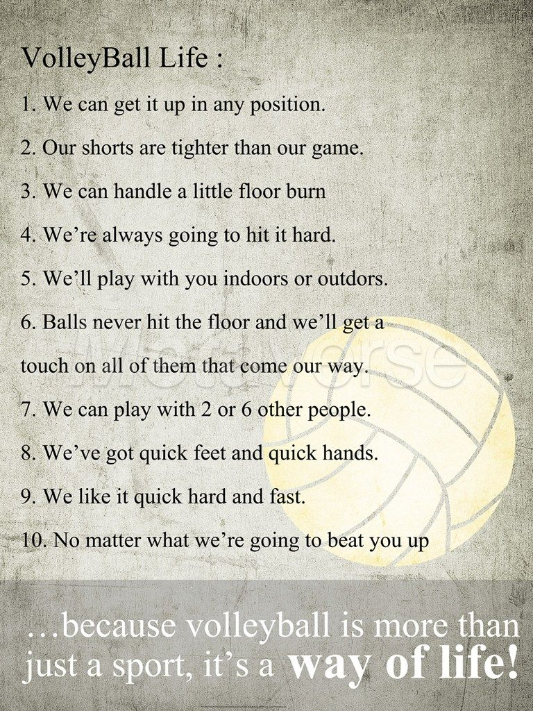short essay about volleyball