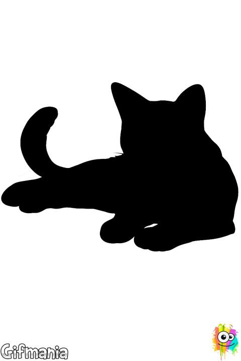 Gato Realista Gato Animal Mascota Dibujo En 2020 Dibujos De