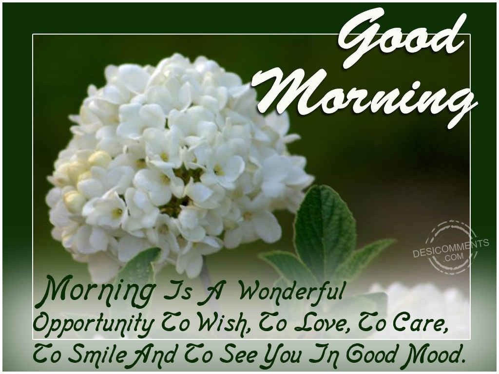 Beautiful Good Morning Messages For Your Girlfriend. Good Morning