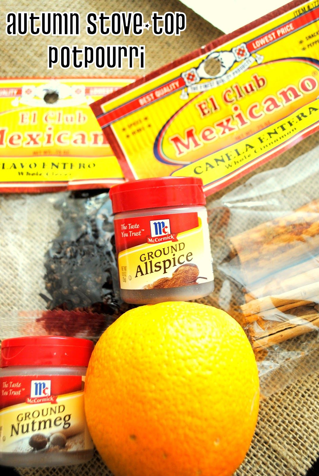Best Cleaner For Stove Top Grease: ThriceTheSpice: Autumn Stove-top Potpourri
