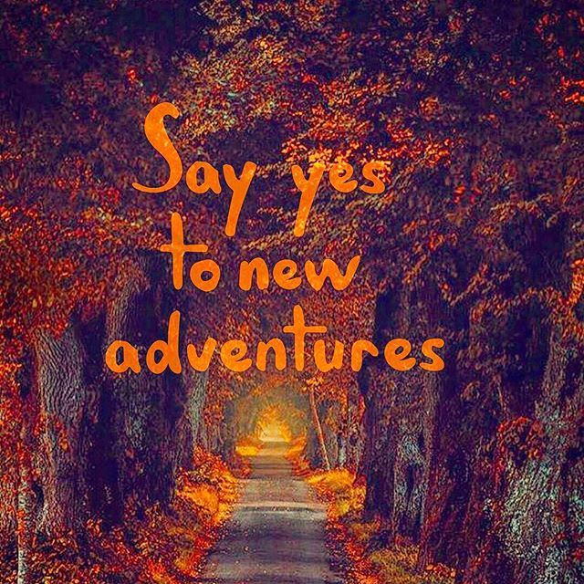 Top 100 adventure quotes photos Say yes to new adventures #adventurequotes #lifequote #quoteoftheday #lovelife #lifeisgood #lifeisgreat #lifeisbeautiful #lifeincolor #lifeinpink #lifeinorange #pink #orange #like4like #follow4follow See more http://wumann.com/top-100-adventure-quotes-photos/
