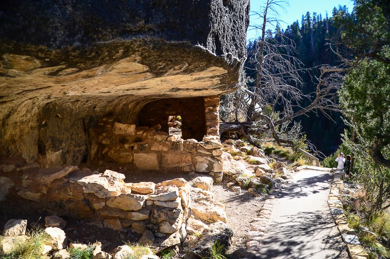 Living With The Sinagua The Walnut Canyon Cliff Dwellings