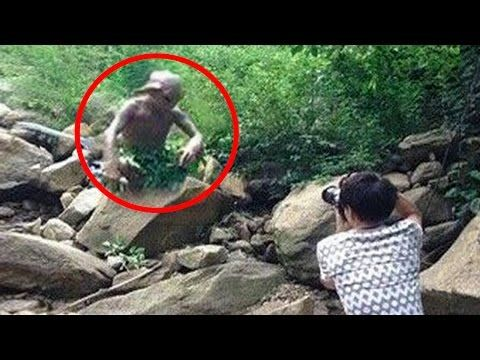 5 Strangest Things Found In The Jungle! - YouTube ...