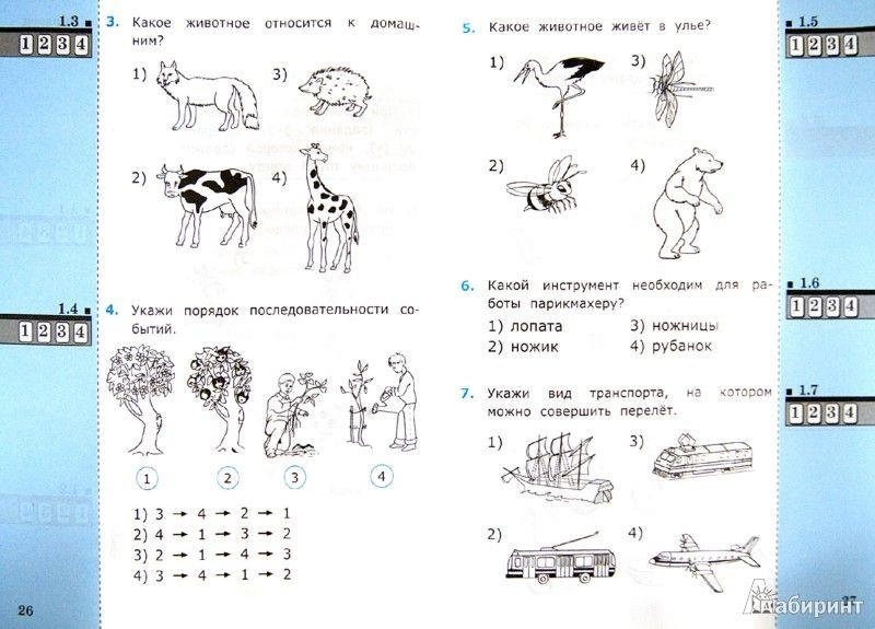 Диагностическая по английскому 11 класс 10декабря