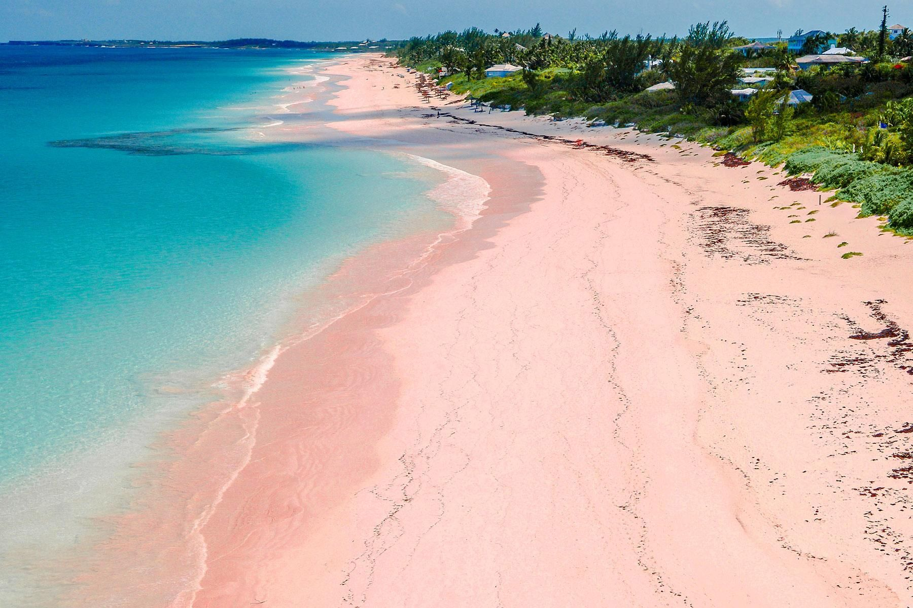 Look At These Incredible Pink Places Pink Sand Beach Bahamas Harbour Island Bahamas Pink Sand Beach