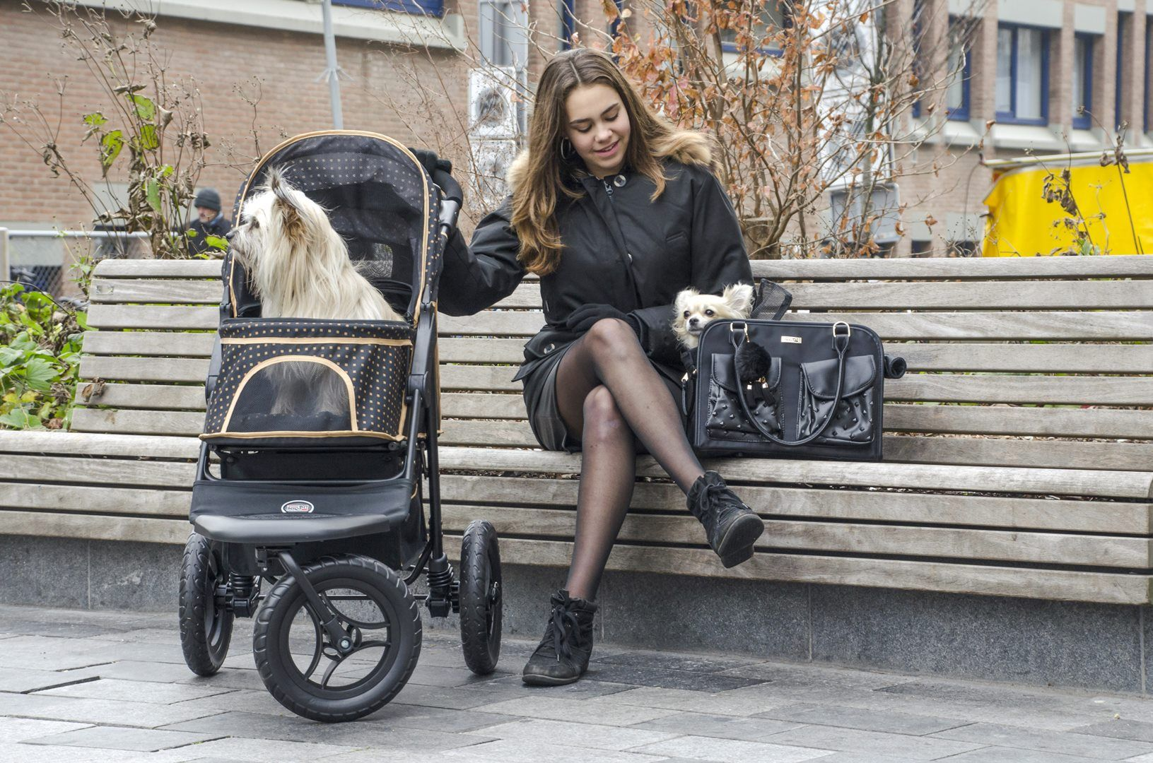 Stunning dog strollers for all sizes, all the best from