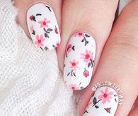 Falling Pink Flowers