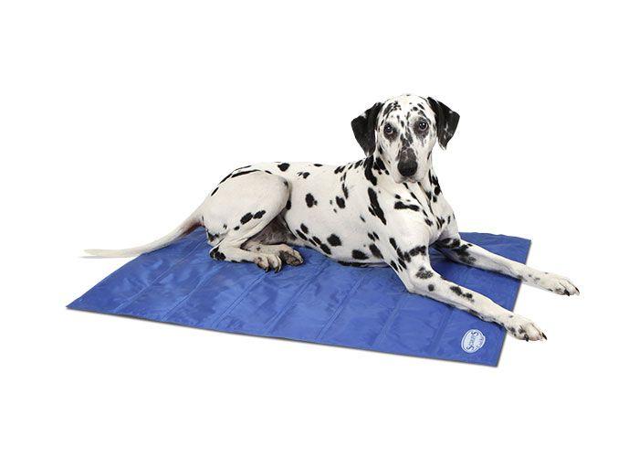 Cool Mat Scruffs Large Self Cooling Wipe Clean Gel Mat 92cm X 69cm 24 99 Dog Bed Pet Cooling Mat Luxury Dog