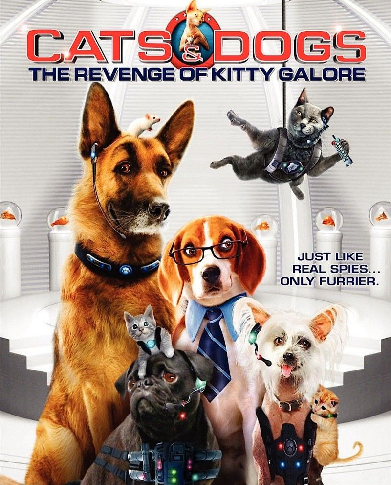 3507 Cats And Dogs The Revenge Of Kitty Galore 2010 720p Webrip Dogs Dog Movies Kitty