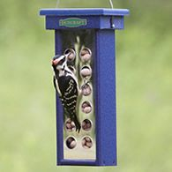 With mirrored surfaces on both sides, woodpeckers can see themselves as they eat and hang out, while you can get a full view of their actions at the same time.  See more details at duncraft.com