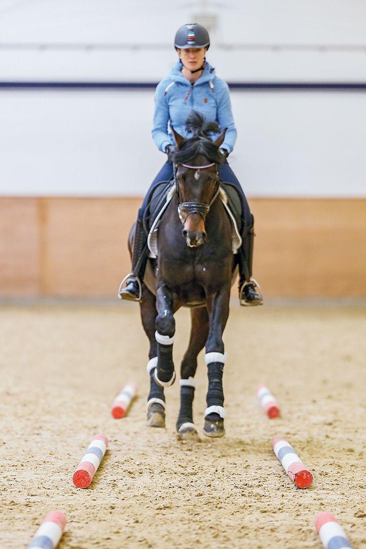 Better Dressage Through Cavaletti Training Yes Horse