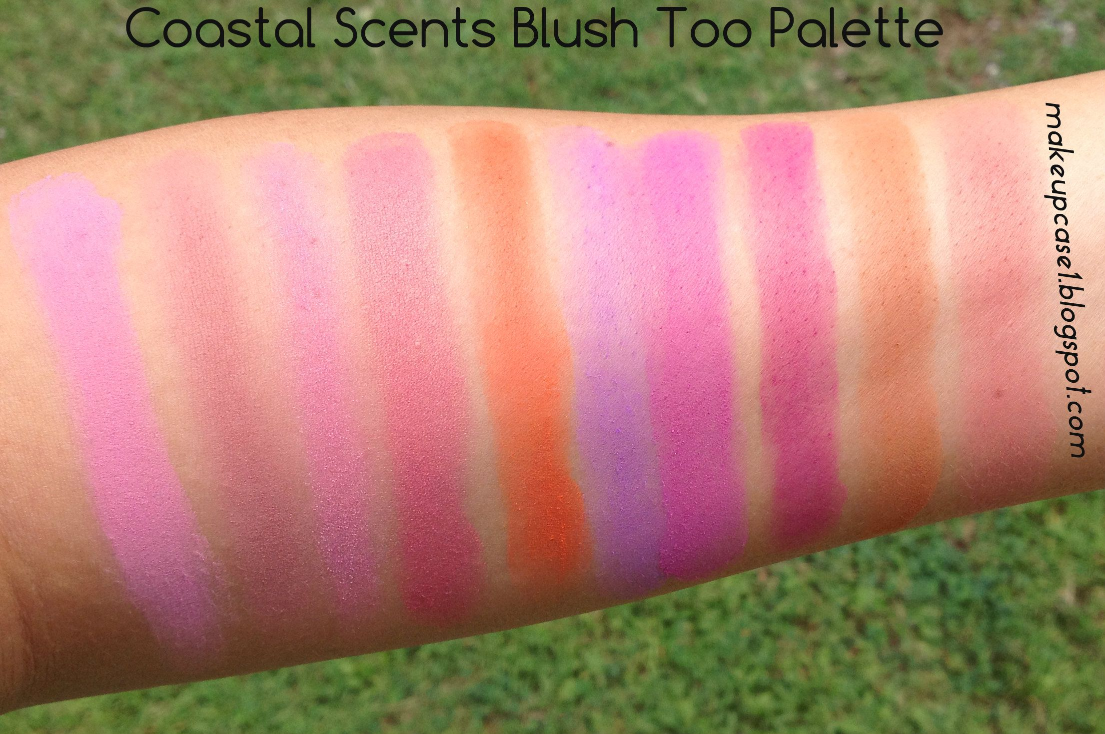 Coastal Scents Blush Too Palette Swatches All Things Beauty Revlon Ultra Hd Lipstick No840 Pointsettia Makeup Dupes