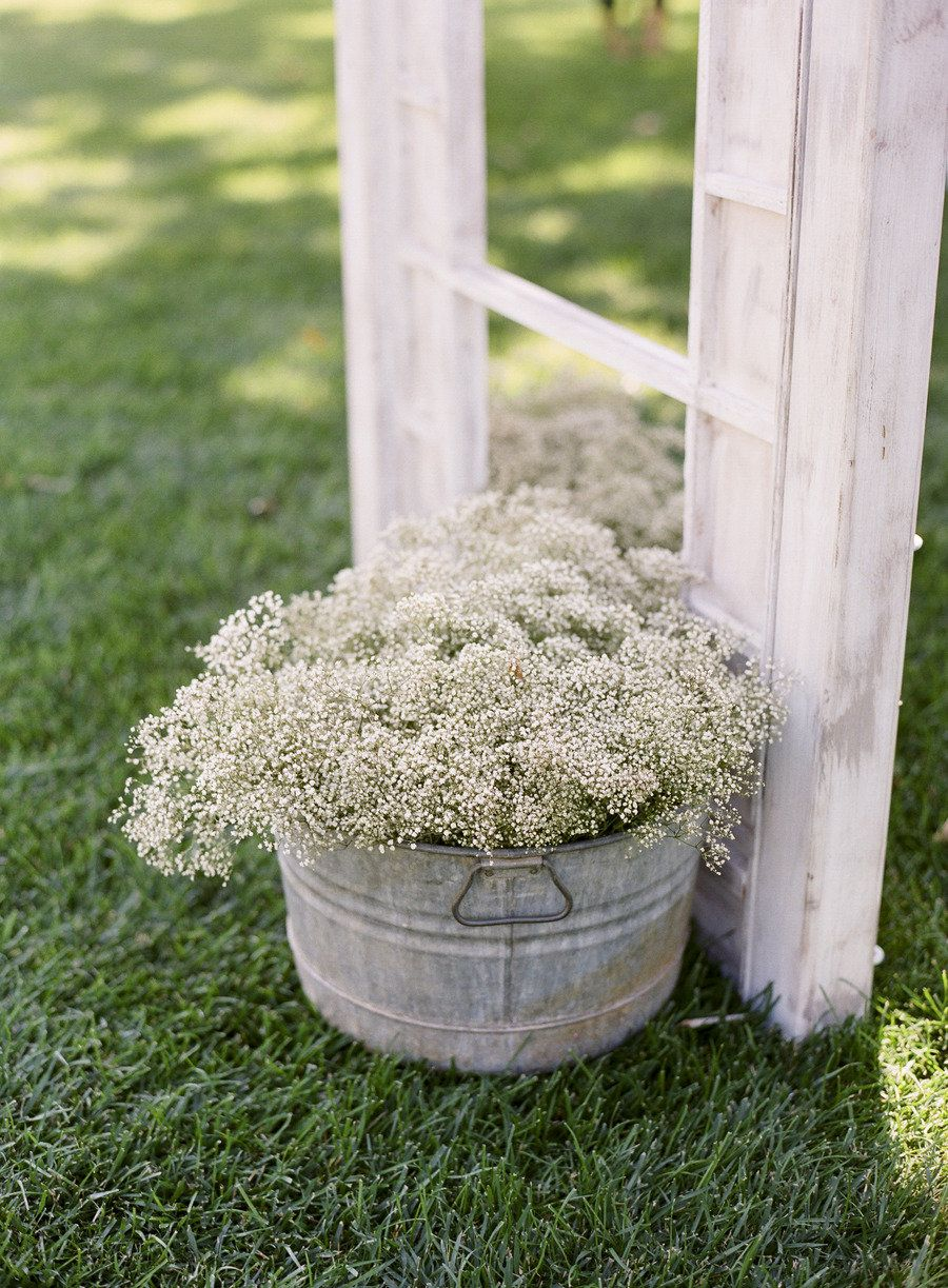 Lodi Wedding By Tanja Lippert Photography Babys Breath Wedding Flowers Outdoor Wedding