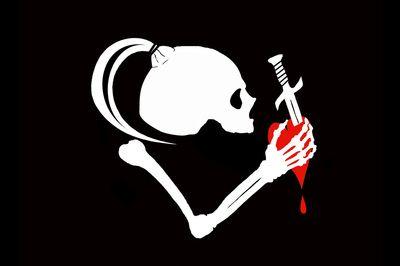 Jolly Roger Trooper Flag Vinyl Decal Sticker Skull Crossbones Star Storm Wars