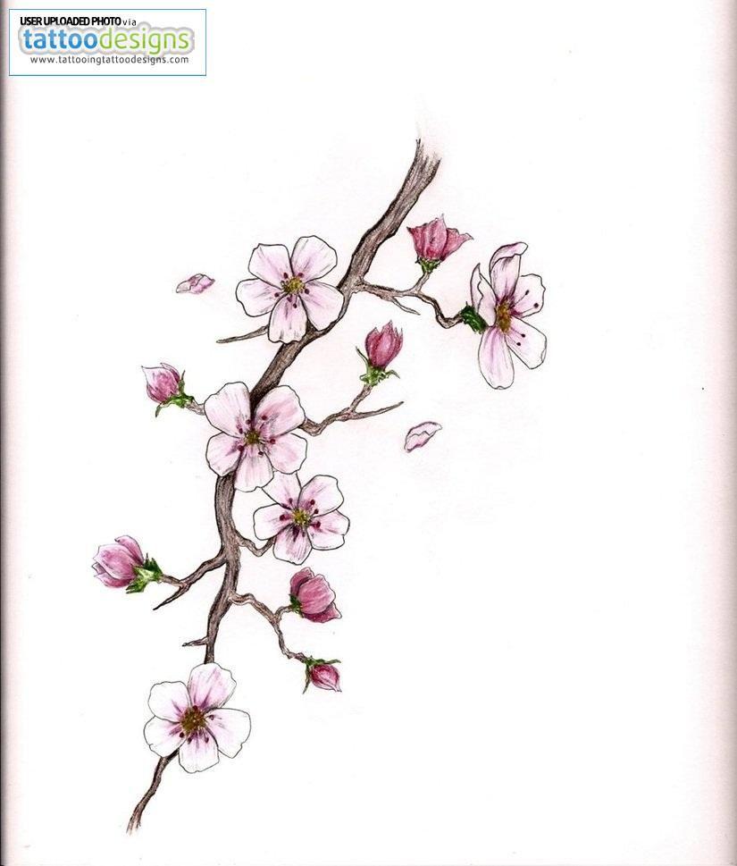 Cherry Blossom Tattoo Hmmm Blossom Tattoo Cherry Blossom Tattoo Cherry Blossom Tattoo Meaning