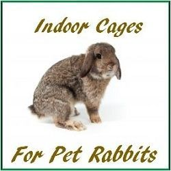 Large Indoor Rabbit Cage Uk Indoor Rabbit Indoor Rabbit Cage Pet Rabbit