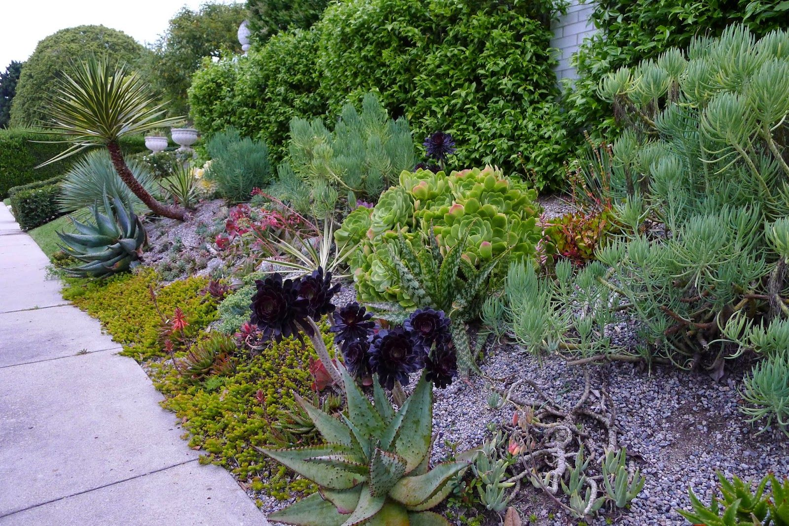 two drought and heat tolerant gardens
