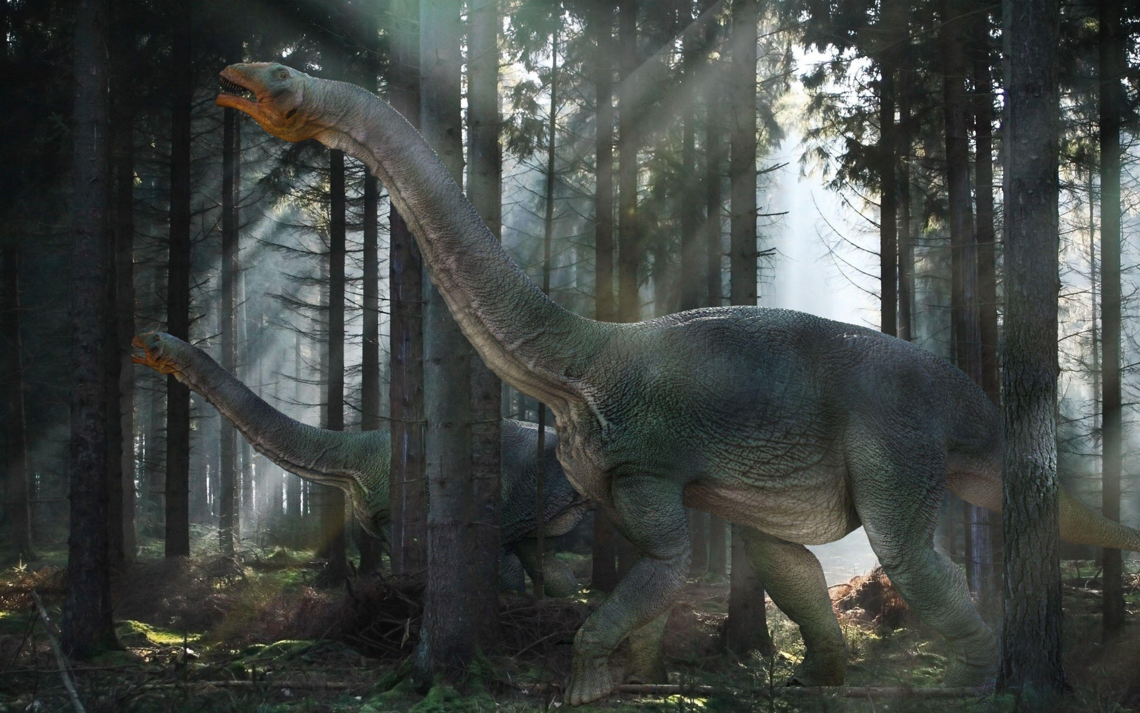 free desktop dinosaur wallpaper hd  dinosaur wallpaper
