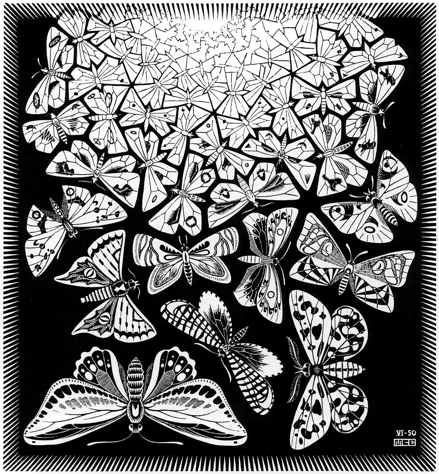 Maurits Cornelis Escher - Butterflies | M.C.Escher | Pinterest ...