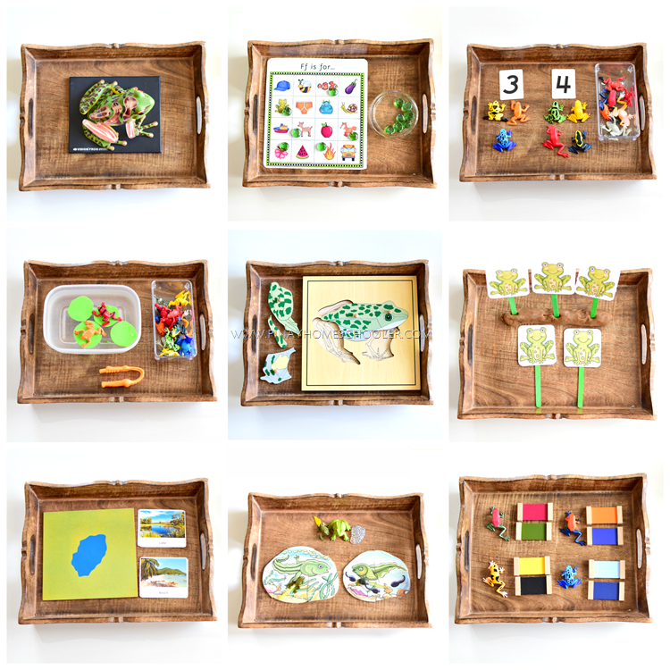 Montessori inspired frog activity trays for preschoolers for Heilpadagogik kindergarten