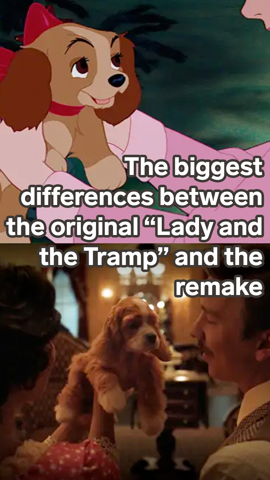 21 Of The Biggest Differences Between The Lady And The Tramp Remake And The Animated Movie In 2020 Lady And The Tramp Animated Movies Disney Kids