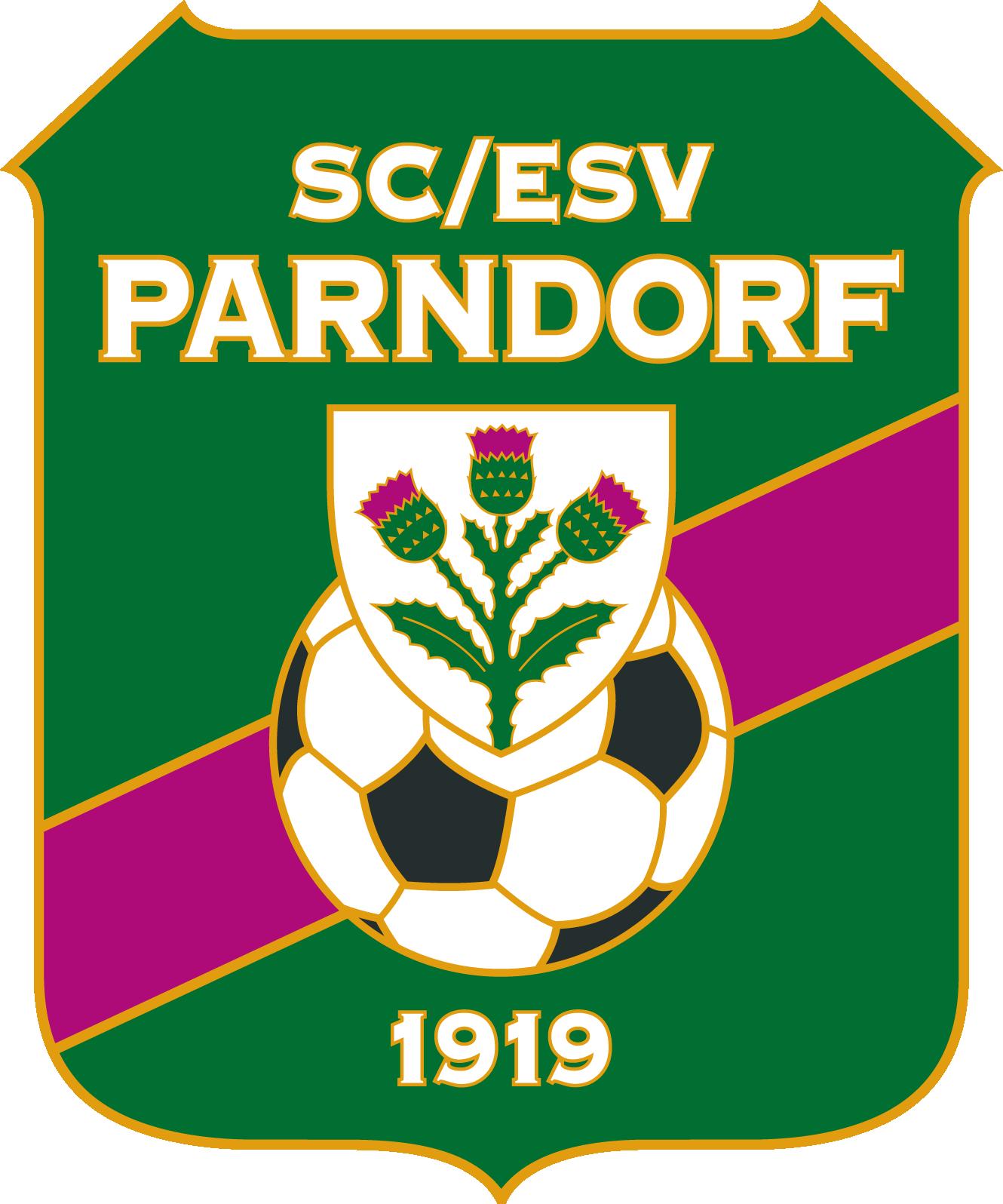 SC ESV Parndorf Football logo, Football team logos, Team