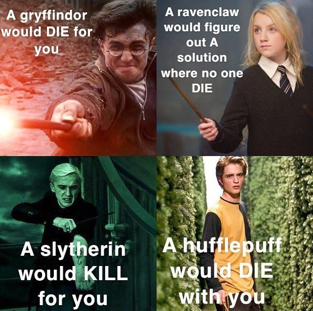 Ravenclaw is the best option  I'm not saying this because I am a Raveclaw