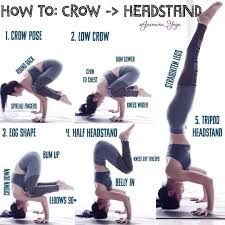 image result for crow pose to headstand with images