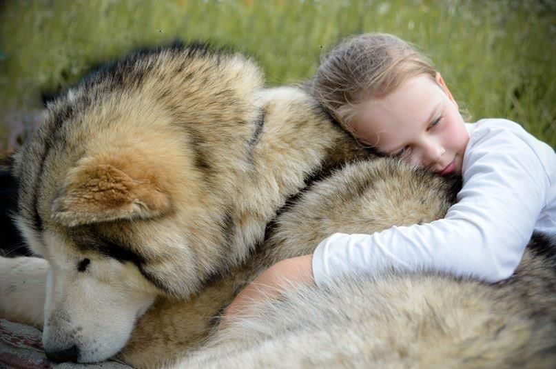 big teddy bear for valentine's day