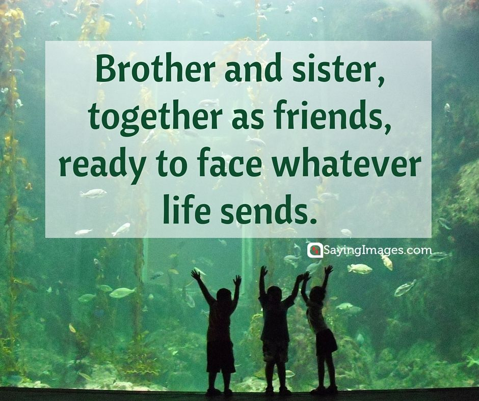 35 Sweet and Loving Siblings Quotes | Love | Sibling quotes