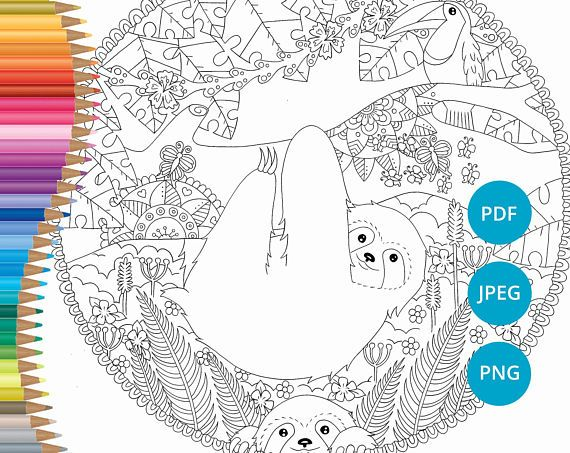 Sloth coloring pages adult coloring book printable coloring