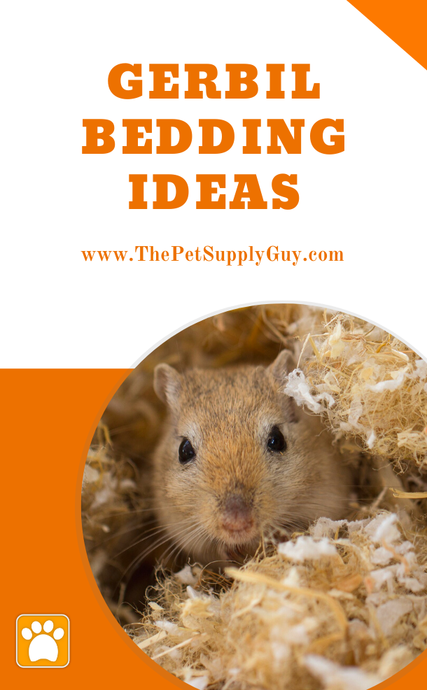 Best Gerbil Bedding The Pet Supply Guy In 2020 Small Pets