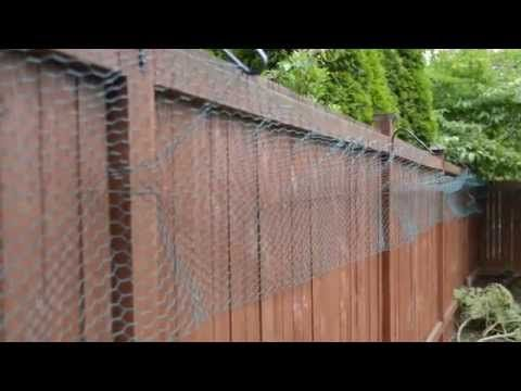 diy cat enclosure - how to make a cheap and low budget do it ... - Cat Patio Ideas