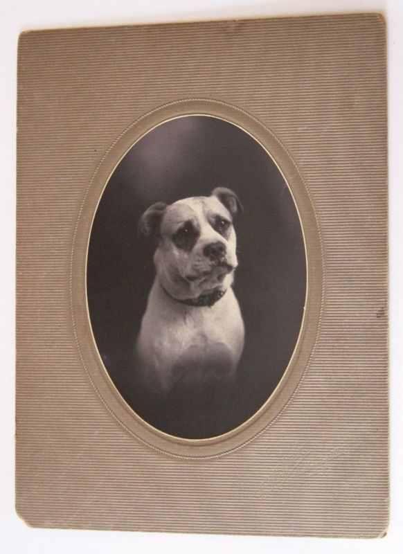 1906 colección C.H.