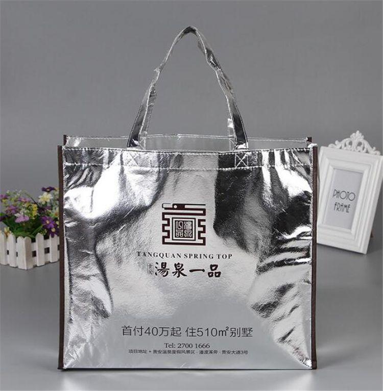 Shiny Bag W Logo No Dimensions Listed