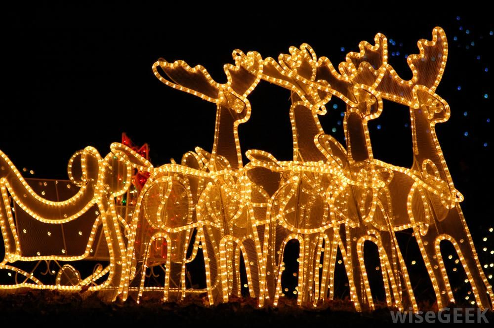 what are different types of christmas lights with pictures